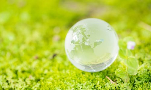 Close up of glass globe in the forest. Environment conservation concept.